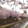 新しい春を迎えて  新年度が始まりましたが、4月は新社会人、 […]