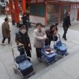 通所の初詣 今年も1月4日から1週間かけて 妙見宮に初詣に行 […]