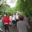 宮地の春光寺へ紫陽花見物に行ってきました—&#8 […]