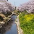 今年も1週間かけて桜見学に行きました。 天気にも恵まれ、春暖 […]